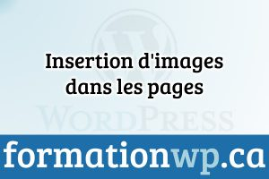 Insertion d'images dans les pages sur Wordpress